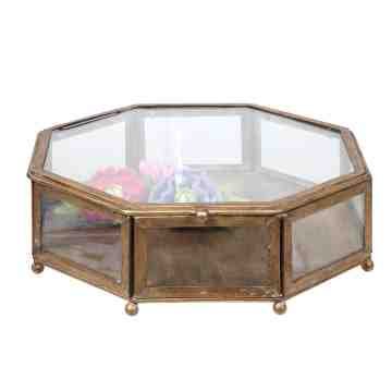 Lumikasa Antique Gold Metal and Glass Display Box