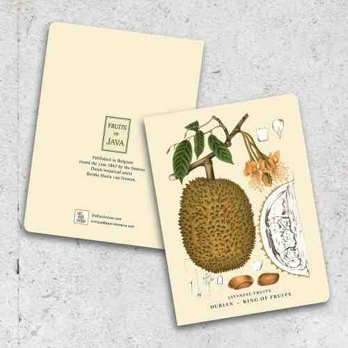 Old East Indies Thin Book King of Fruits - Durian