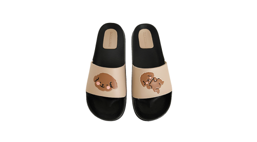 Playful Poodle Slides Oat