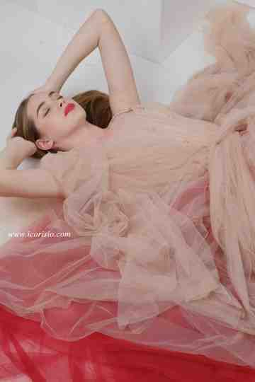 SEA TULLE GOWN - NUDE/WINE (SAMPLE SALE) image