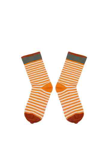 Socks Zest Stripe